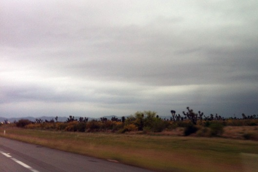 View from Highway 85